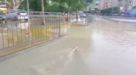 inondation poisson