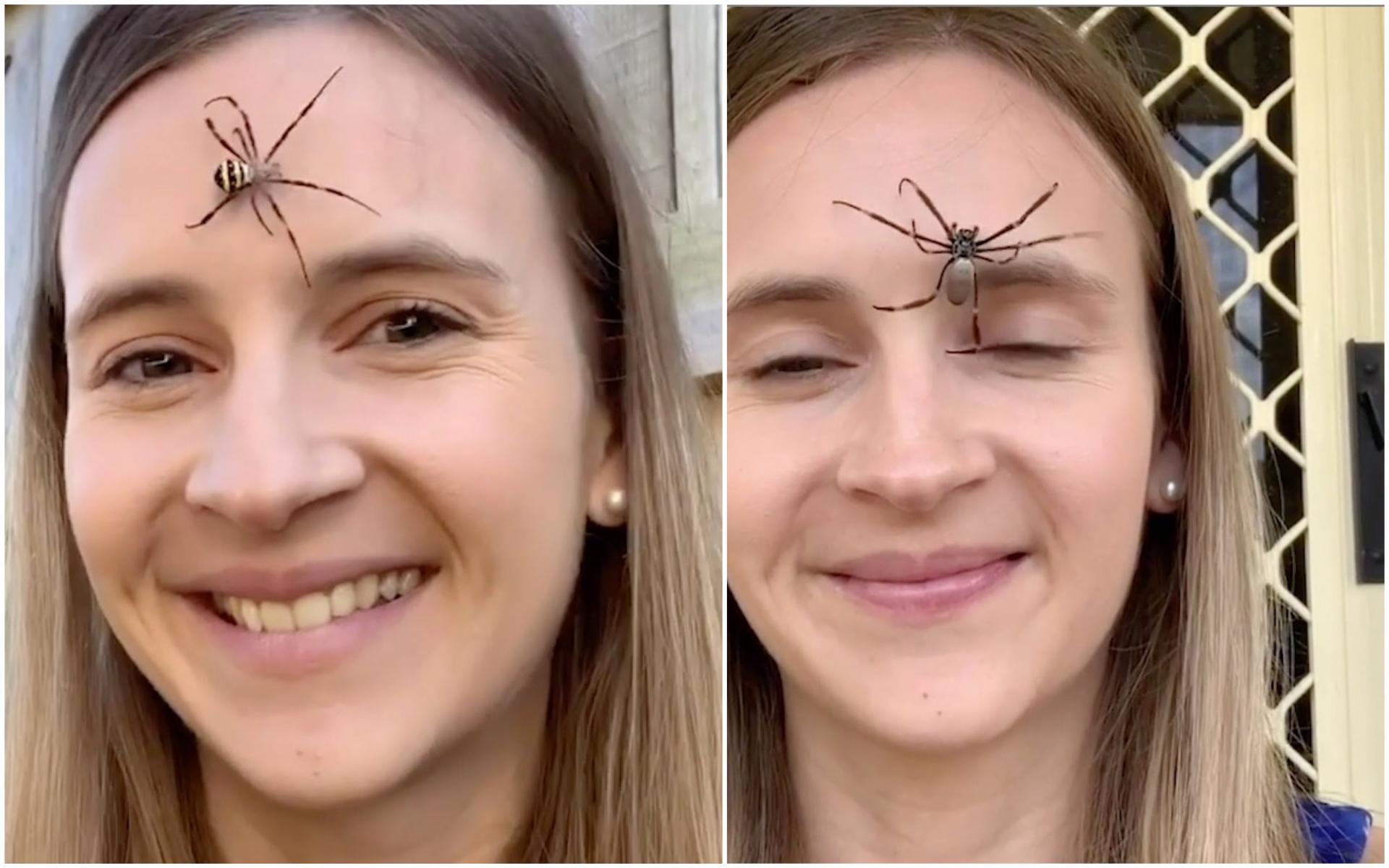 Victime de stress quotidien : cette femme se met des araignées sur le visage pour le contrôler ! (vidéo)
