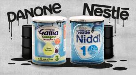 nestlé et danone laits contaminés