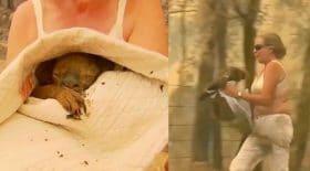 Cette femme sauve un koala des flammes