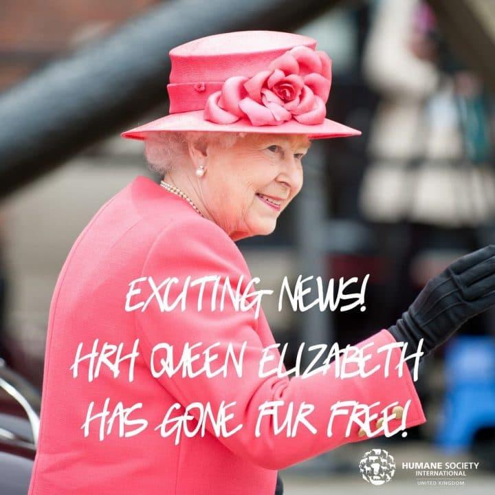 Les associations de défense des animaux se réjouissent de la décision de la Reine Elizabeth II !