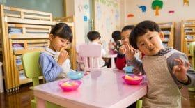 Nouveauté dans les cantines : un repas végétarien imposé une fois par semaine aux élèves !