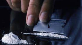 Un journaliste de Vice Canada condamné pour trafic de drogue