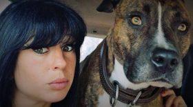 Christophe Ellul lance un appel à témoins pour éclaircir les circonstances de la mort d'Élisa Pilarski