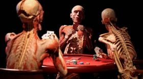 musée cadavres humains