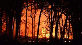 Violent Incendie à Martigues