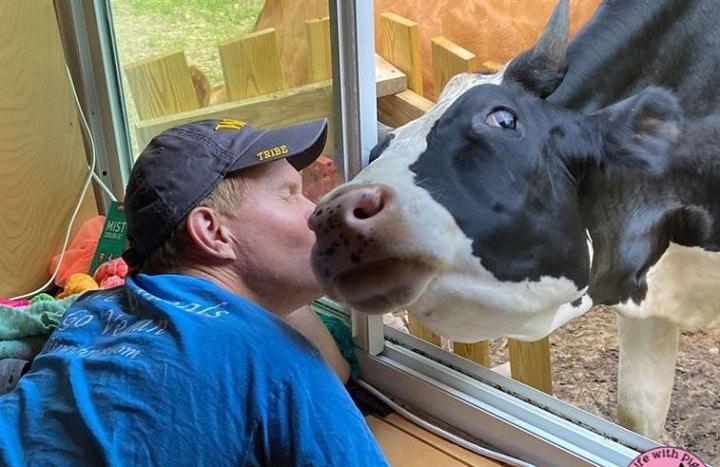 une-vache-sauvee-de-labattoir-cree-un-lien-incroyable-avec-ses-proprietaires