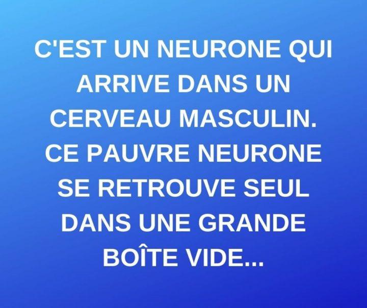 Un neurone arrive dans un cerveau masculin