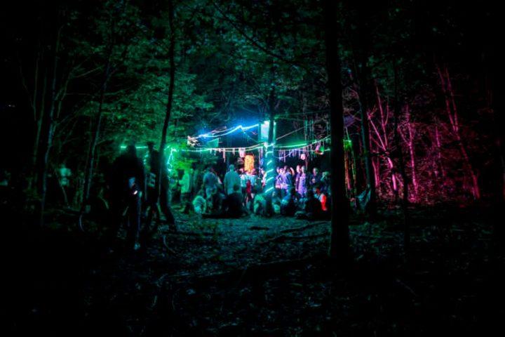 Les gendarmes interviennent pour interrompre une fête clandestine dans les bois!