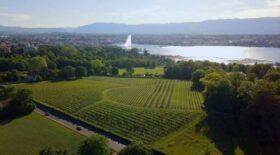 En Suisse, Cologny baisse ses impôts