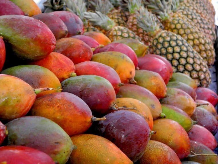 Fruits Michel Cymes