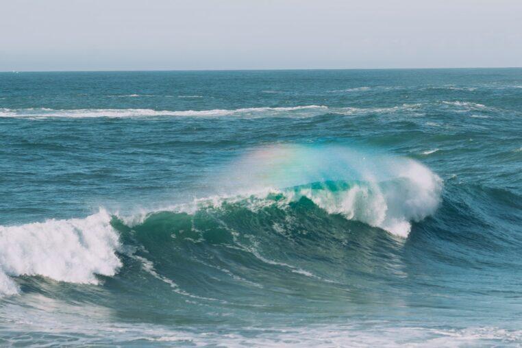Fukushima : eau contaminée déversée dans l'océan Pacifique