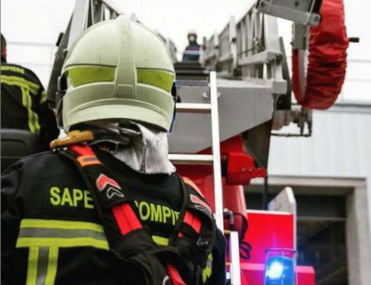 Un chien sauve son maître lors d'un incendie dans leur maison