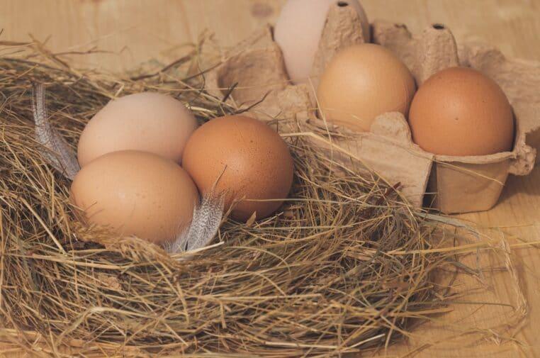 Astuce cuisine Épatez vos convives avec des œufs sur le plat originaux