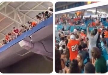Des spectateurs sauvent miraculeusement un chat tombé du haut des tribunes (vidéo)